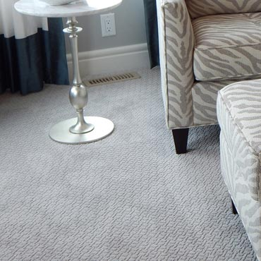 Wear-Dated Carpet Fiber | Springfield, VA
